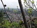 Como - panoramio (40).jpg