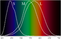Cone-fundamentals-with-srgb-spectrum.png