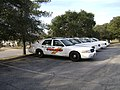 Cordele Police vehicles.JPG