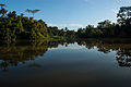 Costa Rica - Caribbean Sea - Parismina (Eco-Tourism) - 06.jpg