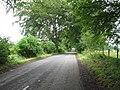 Country Lane towards Hall's Tenement - geograph.org.uk - 1961978.jpg