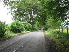Country Lane towards Hall's Tenement - geograph.org.uk - 1961978.jpg