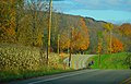 County Turnk Highway W - panoramio (1).jpg