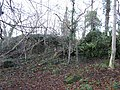 Crag, Craiglockhart - geograph.org.uk - 288329.jpg