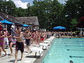 Crowded swimming pool.jpg