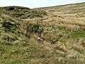 Crowden Little Brook - geograph.org.uk - 423641.jpg