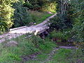 Darguziskiai, tiltas per Trimesedi, 2006-08-20.jpg