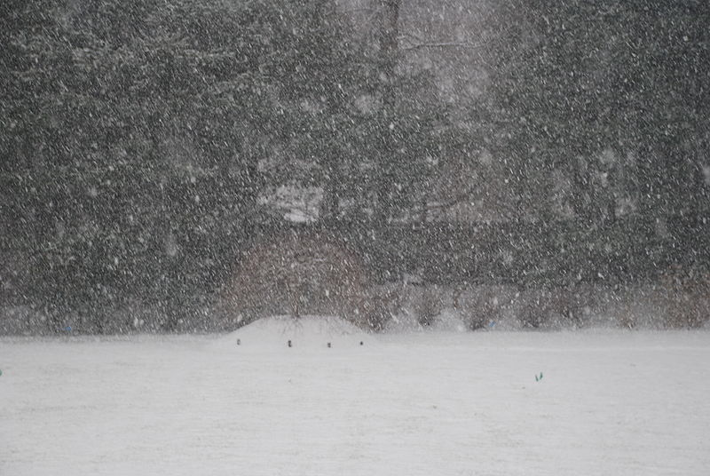 File:December 19, 2008 Snowstorm in S.  Westchester1.JPG