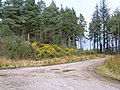 Deer Park - geograph.org.uk - 765061.jpg