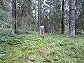 Degučių sen., Lithuania - panoramio (194).jpg