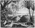 Die Gartenlaube (1879) b 441.jpg