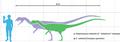 Dilophosaurus scale.png