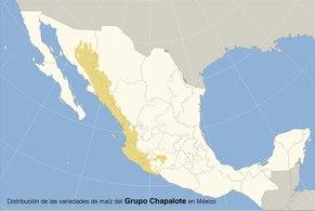 Distribución de las variedades de maiz del grupo chapalote en mexico.pdf