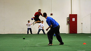 Image result for ball dodge