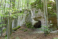 Dolomitfelsen von Lockenricht 02.jpg