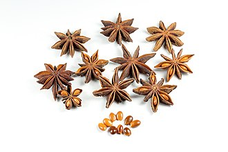 Illicium verum - Star anise fruits and seeds