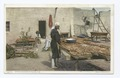 Drying Peaches at Isleta, New Mexico (NYPL b12647398-69475).tiff