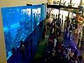 Dubai Mall Aquarium - panoramio.jpg