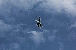 EF-18 Hornet - Jornada de puertas abiertas del aeródromo militar de Lavacolla - 2018 - 26.jpg