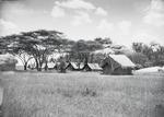 ETH-BIB-Das Serengeti-Camp-Kilimanjaroflug 1929-30-LBS MH02-07-0047.tif