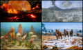 Earth Eons Collage.png