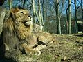 Eberswalde zoo 009.jpg
