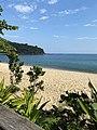 Ecologia digital - Matheus Vasconcelos - Praia Litoral Norte.jpg