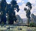 Edgar Payne Eucalyptus Trees.jpg