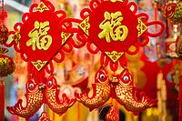 Edmonton Chinese New Year 2015 (16444087956).jpg