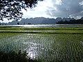 Ein Du, Myanmar (Burma) - panoramio (1).jpg