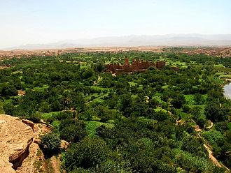 Kalaat M'Gouna - Image: El Kelaa Mgouna (lluket)