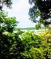 Eleyele river. 02.jpg