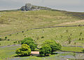 Emsworthy and Hay Tor.jpg