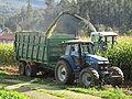 Ensiladora. Vilarromarís, Oroso. 20091025 0017.JPG