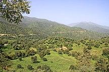 Eritrea-Wildlife-Eri landscape
