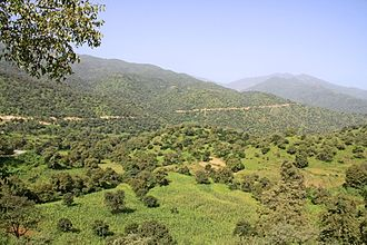 Eritrean landscape near road to Massawa Eri landscape.jpg