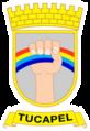 EscudoTucapel.png