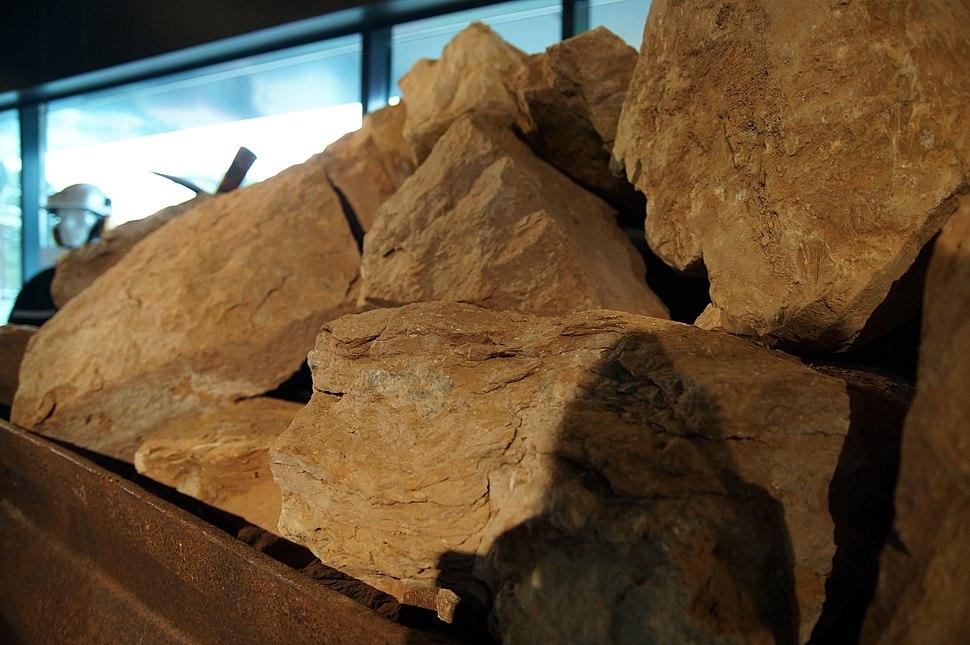 Estonian shale