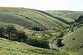 Exmoor, river Barle - geograph.org.uk - 519985.jpg
