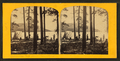 Exploring party, Huron Mountain, from Robert N. Dennis collection of stereoscopic views.png