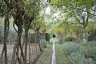 Jardin de lalchimiste