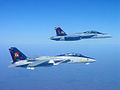 F-14B and FA-18F of VF-VFA-11 Starboard - 2005.jpg