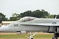 F18 Hornet - RIAT 2006 (2531167093).jpg