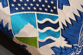 FEMA - 40201 - DHS Flag detail of shield.jpg
