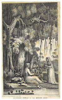 Banyan merchants