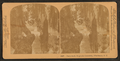 Fairy-land, Magnolia Cemetery, Charleston, S.C, from Robert N. Dennis collection of stereoscopic views.png