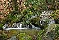 Fall Creek (Revisited) (12) (11660116154).jpg