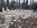 Farkasréti zsidó temető. Katonai parcella, 2016 Budapest.jpg