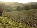 Farmland, Middle Assendon - geograph.org.uk - 1049565.jpg