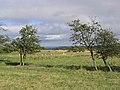 Farmland south of St Margaret's Farm - geograph.org.uk - 542544.jpg